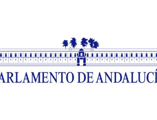 Visita al Parlamento de Andalucía.