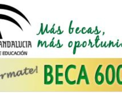 BECA 6000.