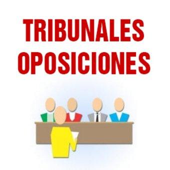 Presidente tribunal oposición