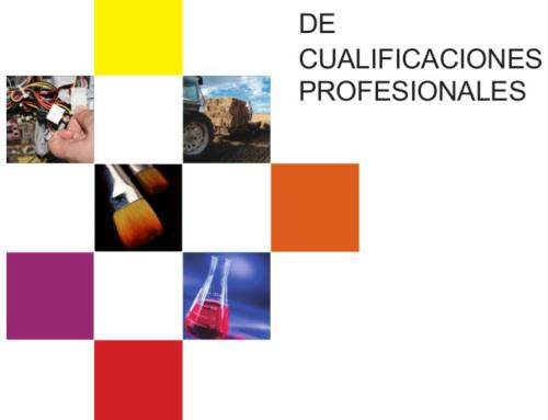 Actualización del Catálogo Nacional de Cualificaciones Profesionales. Edificación y Obra Civil.