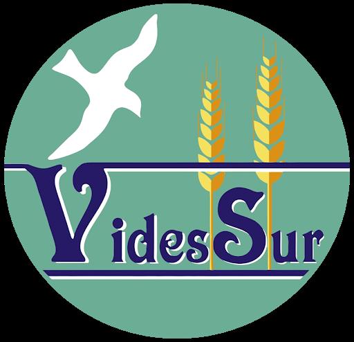 8M Día Internacional de la Mujer. VidesSur.